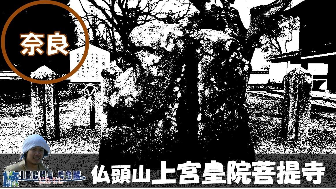奈良県高市郡明日香村にある天台宗の寺院「橘寺(たちばなでら)」にやってきました!! こちら寺院は、寺伝では聖徳太子が建立したと伝わる聖徳太子建立七大寺の1つの寺院で、本尊に聖徳太子・如意輪観音が祀られております。 推古天皇の御代から伝わる古寺を参拝し、歴史ロマンに触れてみたいと思います。