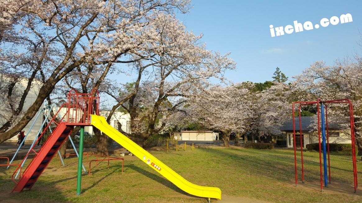 滑り台:印西市印旛中央公園