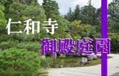 京都でも有数の庭園が観られる世界遺産『仁和寺御殿庭園』へ潜入調査!!