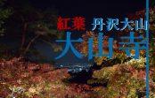 神奈川県伊勢原市の人気紅葉スポット『大山寺』に行ってみた!~中腹編~