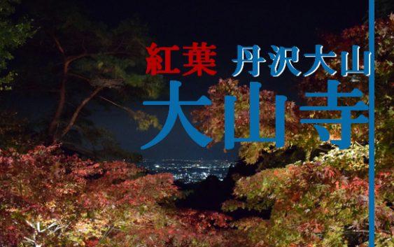 大山寺 紅葉