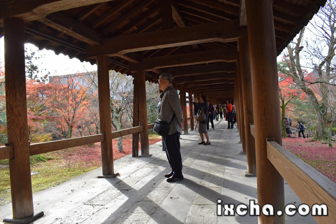 東福寺 渡り廊下