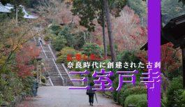 京都の紅葉の名所として知られる奈良時代創建の古刹『三室戸寺』をご案内