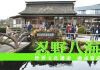 人気観光地として外国人観光客が大挙して訪れる世界文化遺産『忍野八海』