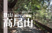 都心から最も近く初心者でも登山を楽しむ事が出来る『高尾山』に登ってみた