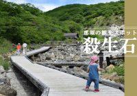 近づく物は命が奪われると伝わる栃木県那須町の『殺生石』を観に行ってみた